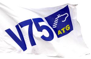 Atg v75 spelstopp