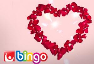 BingoKalaset