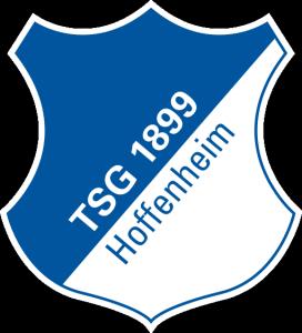 Hoffenheim log