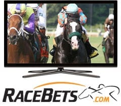 Livestreaming hos RaceBets