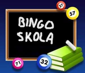 Bingoskola